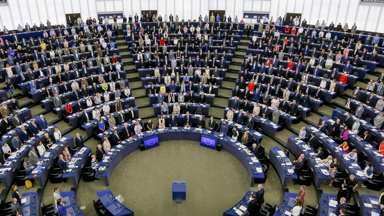 Migration, brexit och skogsanvändning är några frågor som EU-parlamentarikerna arbetar med i höst. Arkivbild.