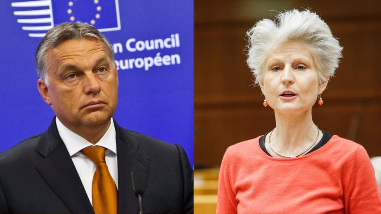 Viktor Orbáns parti är tillfälligt suspenderat från konservativa EPP men Moderaternas Anna Maria Corazza Bildt tycker att mer måste göras för att Fidesz inte ska ha makt i gruppen.