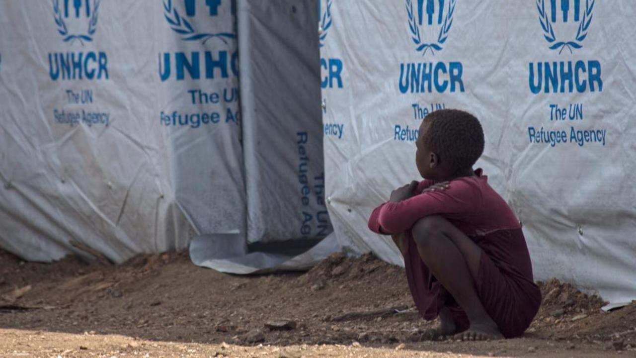 EU vill skapa migrantläger i Nordafrika i samarbete med FN-organen UNHCR och IOM.