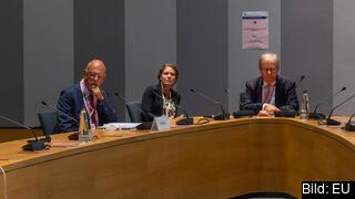 Till vänster EU-minister Hans Dahlgren, i mitten hans statssekreterare Paula Carvalho Olovsson och till höger Sveriges EU-ambassadör Lars Danielsson. Arkivbild.