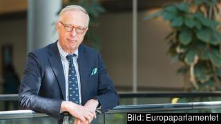 Gunnar Hökmark, ordförande i tankesmedjan Frivärld.