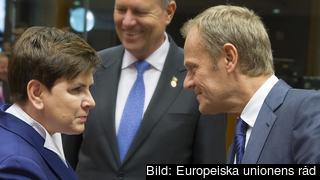Polens premiärminister Beata Szydło och Europeiska rådets ordförande Donald Tusk. Arkivbild.