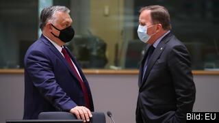 Sveriges statsminister Stefan Löfven, här i samtal med Ungerns premiärminister Viktor Orbán, är en av 16 stats- eller regeringschefer som skrivit under protestbrevet mot antihomolagen. Arkivbild.
