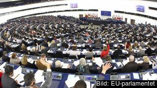 Sverige ska rösta fram 21 av 705 EU-parlamentariker 26 maj. Arkivbild.