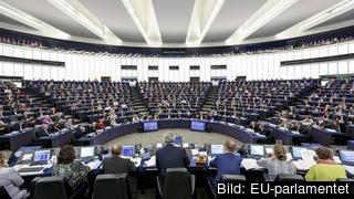 EEU-parlamentet diskuterade på onsdagen det kommande EU-toppmötet 19-20 oktober. Arkivbild.