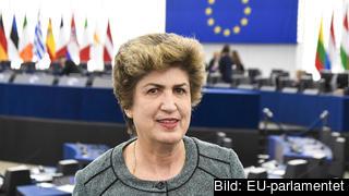 Maria João Rodrigues är ansvarig för den sociala pelaren i Europaparlamentet.