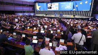 EU-parlamentet under valvakan natten till måndag.