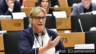 Karin Karlsbro har representerat den liberala RE-gruppen i förhandlingarna om EU-parlamentets position om handels- och investeringsavtalet med Vietnam. Arkivbild.