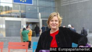 Trots brexit och klimatkris får detta inte bli en tid att misströsta, skriver Europaparlamentariker Karin Karlsbro (L).