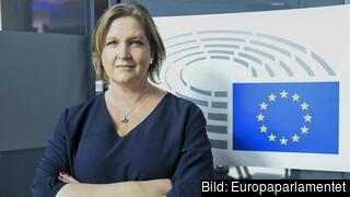 Europaparlamentarikern Karin Karlsbro (L) kommer bojkotta nästa veckas parlamentsmöte i Strasbourg och uppmanar andra politiker att följa hennes exempel.