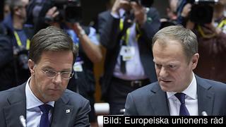 Nederländernas premiärminister Mark Rutte samtalar med Europeiska rådets ordförande Donald Tusk. Arkivbild.