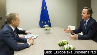 Europeiska rådets ordförande Donald Tusk i samtal med Storbritanniens premiärminister David Cameron.