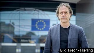 Europaparlamentariker Pär Holmgren (MP).