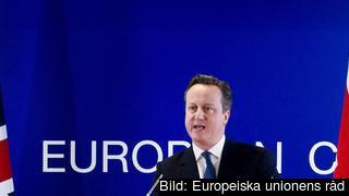 Den brittiske premiärministern David Cameron efter förra veckans toppmöte.