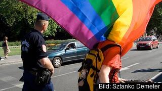 I Ungern kommer inte samkönade par längre att kunna adoptera. Arkivbild.