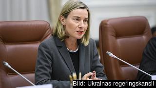Enligt EU:s utrikeschef Federica Mogherini gör EU sitt bästa för att att emot USA:s sanktioner och upprätthålla kärnteknikavtalet med Iran, men många europeiska företag flyr nu landet.