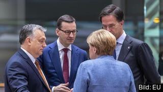 Ungerns och Polens premiärministrar Viktor Orbán och Mateusz Morawiecki i samtal med den tyska förbundskanslern Angela Merkel och Nederländernas premiärminister Mark Rutte. Arkivbild.