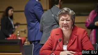Sveriges arbetsmarknadsminister Ylva Johansson (S) under måndagens förhandlingar i Luxemburg.