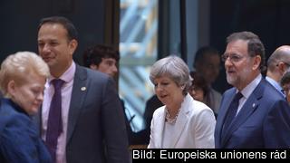 Den brittiska premiärministern Theresa Mays vid förra veckans EU-toppmöte.