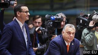 Polens premiärminister Mateusz Morawicki och Ungerns dito Viktor Orbán. Arkivbild.