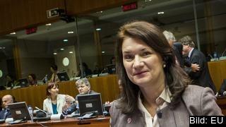 Sveriges EU-minister Ann Linde.
