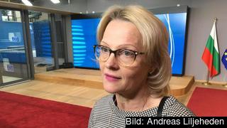 Migrationsminister Heléne Fritzon (S) hoppas att EU-länderna ska enas i asylfrågan till sommaren.