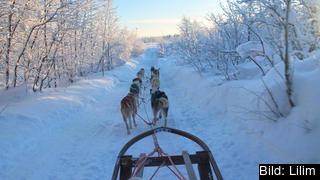Bilden är tagen i Kiruna som ligger i Norrbotten, regionen tar emot näst mest EU-stöd per invånare i Sverige.