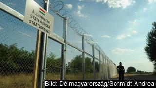 Migranter som väntas på att avvisas i läger vid den ungersk-serbiska gränsen får enligt bland annat FN ingen mat. Arkivbild.