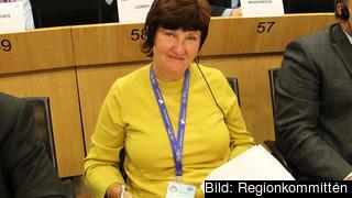 Ewa-May Karlsson (C) efterlyser en EU-strategi för alkoholrelaterade frågor
