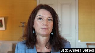 EU- och handelsminister Ann Linde (S) fick viss kritik när konsitutionsutskottet lämnade sin årliga rapport på torsdagen.