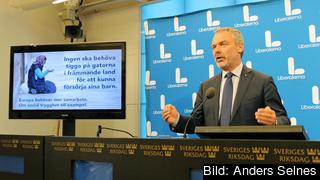 Liberalerna partiledare Jan Björklund vill att Sverige stödjer EU-kommissionens förslag på minimirättigheter för medborgarna på det sociala området.