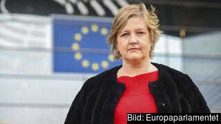 – Det är skamligt att ett svenskt parti, SD, i Europaparlamentet sitter i samma partigrupp som Polens Lag och Rättvisa, ECR, och att de aldrig tar kampen mot dem i abortfrågan utan ständigt dansar efter deras pipa. Det skriver Karin Karlsbro (L). Arkivbild.