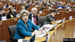 Socialdemokratiska EU-parlamentarikerna Maria João Rodrigues och Udo Bullman vill se nya lagar och att mer EU-pengar satsas på den sociala pelaren.