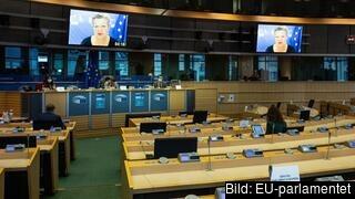 En stor del av EU-parlamentets verksamhet har under coronapandemin skett på distans via videolänk. Arkivbild.
