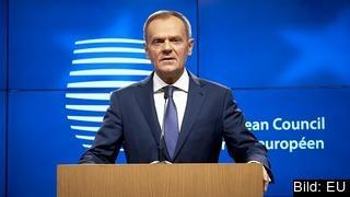 Europeiska rådets ordförande Donald Tusk vill att Storbritannien under en övergångsperiod följer EU-lagar utan möjlighet att påverka dem.