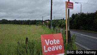 Vote Leave var en av de kampanjorganisationer som betalade för dark ads på Facebook.