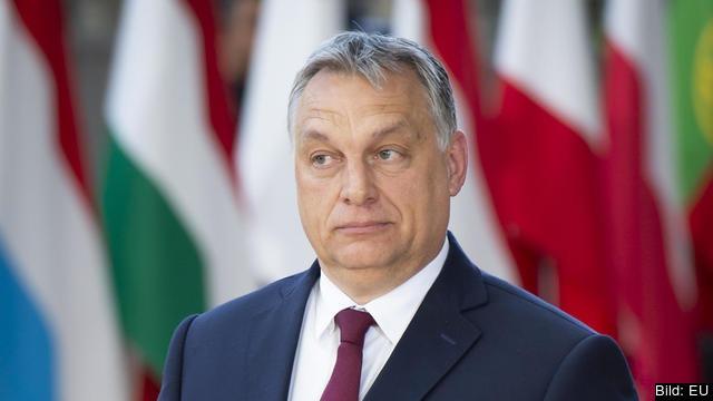 Ungerns nationalkonservative premiärminister Viktor Orbán. Arkivbild.