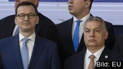 Mateusz Morawiecki och Viktor Orbán.