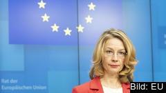 Finlands EU-minister är inte nöjd med den ungerska regeringens svar. Arkivbild.
