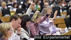 Tre av de fyra svenska Europaparlamentariker som varit borta vid flest antal omröstningar har fått barn under mandatperioden.