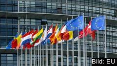 EU-ländernas flaggor utanför parlamentet i Strasbourg. Bilden är en arkivbild.