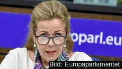 Cecilia Wikström (L) är ledamot av Europaparlamentet.