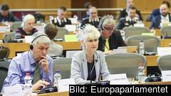 Efter petningen har Europaparlamentarikern Anna Maria Corazza Bildt chans att bli omvald krympt.