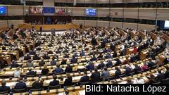 Vid torsdagens omröstning höll en del parlamentariker upp lappar i protest mot att omröstningen var hemlig.