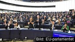 EU-parlamentariker gratulerar Ursula von der Leyen till posten som nästa ordförande i EU-kommissionen.