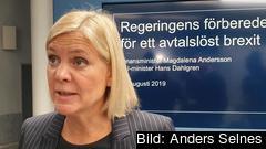 Finansminister Magdalena Andersson (S) uppmanar företagen att förbereda sig på en hård brexit senare i höst.