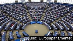"""Europaparlamentet vill se """"ett massivt återhämtningsspaket utöver det som redan gjorts""""."""