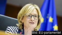 Nuvarande vice talman i EU-parlamentet, Mairéad McGuinness, föreslås bli ny kommissionär från Irland. Arkivbild.
