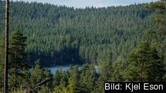 """""""Att ta hand om miljön är som att betala hyran. Gör man inte det har man till slut ingenstans att bo"""", säger Europaparlamentariker Pär Holmgren (MP)."""