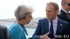 Premiärminister Theresa May bekräftade på tisdagen att samtal pågår om att senarelägga brexit. Här tillsammans med Europeiska rådets ordförande Donald Tusk. (Arkivbild)